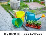 gardening on a country site in... | Shutterstock . vector #1111240283