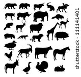 vector set of animals silhouette - stock vector
