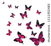 beautiful pink butterfly flying ... | Shutterstock . vector #1111502483