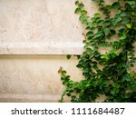 green coat buttons on the wall | Shutterstock . vector #1111684487