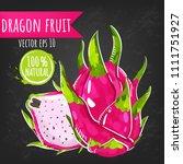 dragon fruit. fresh pitaya...   Shutterstock .eps vector #1111751927