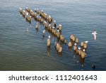 old wooden pier. seagulls on... | Shutterstock . vector #1112401643