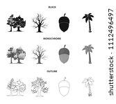 burning tree  palm  acorn  dry... | Shutterstock .eps vector #1112496497