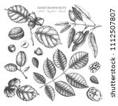 vector collection of hand drawn ... | Shutterstock .eps vector #1112507807