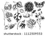 vector collection of hand drawn ... | Shutterstock .eps vector #1112509553