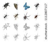 an insect arthropod  an osa  a...   Shutterstock .eps vector #1112807117