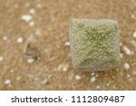 pseudolithos cubiformis  rare... | Shutterstock . vector #1112809487