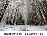 winter landscape with road... | Shutterstock . vector #1112955413