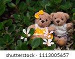 female and male teddy bears...   Shutterstock . vector #1113005657