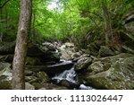 Small photo of Go Forth Creek, TN