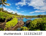 beautiful tropical landscapes... | Shutterstock . vector #1113126137