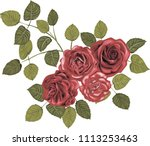 red roses   high quality vector ... | Shutterstock .eps vector #1113253463