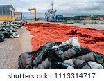 red and crimson nylon fishing... | Shutterstock . vector #1113314717