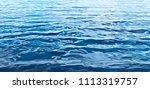 summer background. texture of... | Shutterstock .eps vector #1113319757