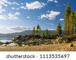 usa  nevada  washoe county ... | Shutterstock . vector #1113535697