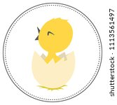 the chick hatched from the egg  | Shutterstock .eps vector #1113561497