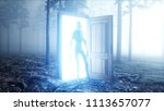 alien in fog night forest.... | Shutterstock . vector #1113657077