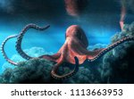 an octopus with an almost red... | Shutterstock . vector #1113663953