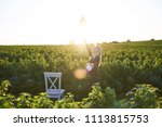 cute young blond girl sits on a ... | Shutterstock . vector #1113815753