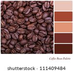 Coffee bean background colour palette with complimentary swatches. - stock photo
