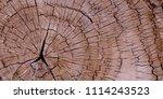 texture of old stump. wooden... | Shutterstock . vector #1114243523