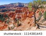 bryce canyon national park ... | Shutterstock . vector #1114381643