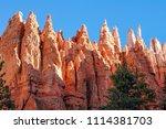 bryce canyon national park ... | Shutterstock . vector #1114381703