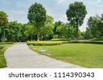 stone pathway in a lush green... | Shutterstock . vector #1114390343