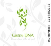 dna spiral with green leaves.... | Shutterstock .eps vector #1114552373