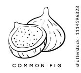 common fig. vector black and... | Shutterstock .eps vector #1114596323