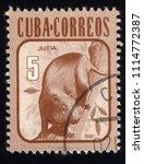 Small photo of SINGAPORE - JUNE 18, 2018: A stamp printed in Cuba, shows Agouti (Dasyprocta aguti), circa 1981
