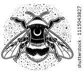 bumblebee hand drawn vector... | Shutterstock .eps vector #1115043827