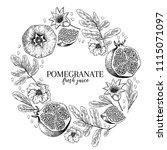 hand drawn pomegranate...   Shutterstock .eps vector #1115071097