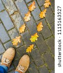 autumn leaf with single male... | Shutterstock . vector #1115163527