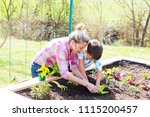 beautiful mother and her blond... | Shutterstock . vector #1115200457