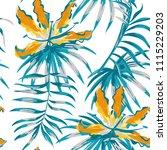 rare tropic flowers orange... | Shutterstock .eps vector #1115229203