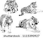 vector drawings sketches... | Shutterstock .eps vector #1115390927