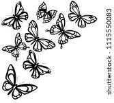 black butterfly  isolated on a... | Shutterstock .eps vector #1115550083