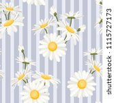 daisy chamomile spring summer... | Shutterstock .eps vector #1115727173