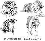 vector drawings sketches... | Shutterstock .eps vector #1115961743