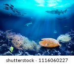 a pearl at the bottom of the... | Shutterstock . vector #1116060227