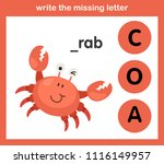 write the missing letter... | Shutterstock .eps vector #1116149957