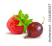 fresh  nutritious and tasty...   Shutterstock .eps vector #1116182327