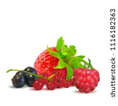 fresh  nutritious and tasty...   Shutterstock .eps vector #1116182363