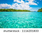 tropical paradise seascape with ... | Shutterstock . vector #1116201833