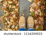 autumn leaf with single male... | Shutterstock . vector #1116204023