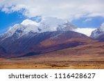 qinghai tibet plateau scenery... | Shutterstock . vector #1116428627
