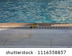 the swimming pool   Shutterstock . vector #1116558857