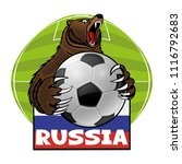 bear with a soccer ball and the ... | Shutterstock .eps vector #1116792683