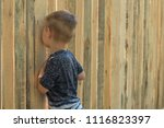 curiosity of the child. a small ... | Shutterstock . vector #1116823397